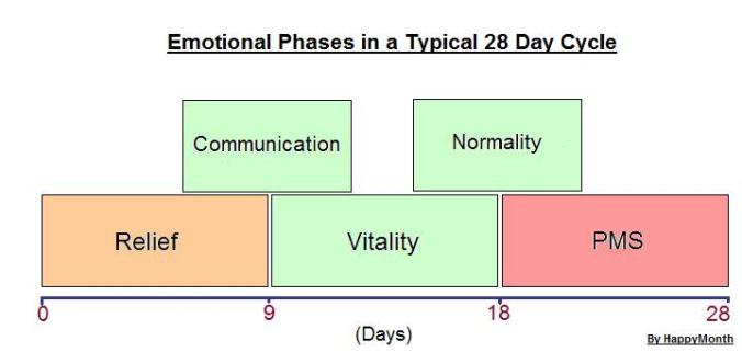 PMS Phases